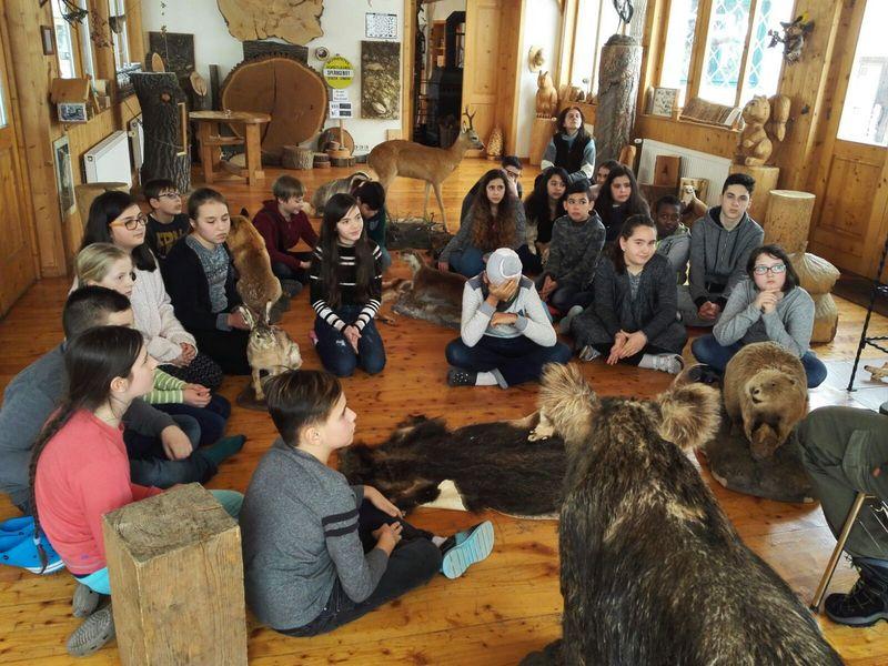 Zu Gast in der Waldschule