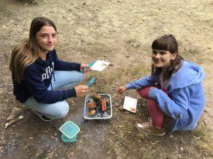 Grillen: Ausflug zu den Steinhofgründen